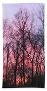 February At Twilight Beach Towel