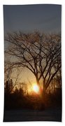 February Sunrise Behind Elm Tree Beach Towel