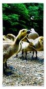 Feed Me Seymore - Baby Geese Beach Towel