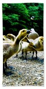 Feed Me Seymore - Baby Geese Beach Sheet