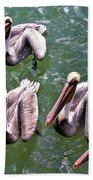 Feed Us Beach Towel