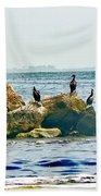 Feeding Frenzy Beach Sheet
