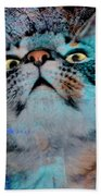 Feline Focus Beach Towel