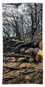 Felled After The Wildfire Beach Towel