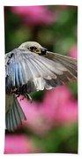 Female Bluebird In Flight Beach Towel