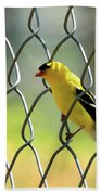 Fence And Feathers Beach Towel