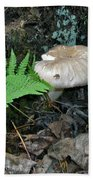 Fern And Mushroom Beach Towel