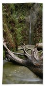 Fern Canyon Creek Beach Towel