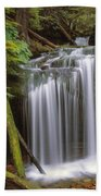 Fern Falls Beach Towel