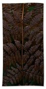 Fern Kaleidescope Beach Towel