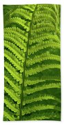 Ferns Beach Towel
