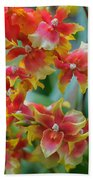 Festive Orchids Beach Towel