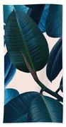 Ficus Elastica 2 Beach Towel