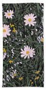Field Daisies Beach Towel