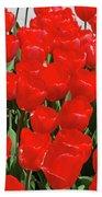 Field Of Brilliant Red Tulip Flowers In A Garden Beach Towel