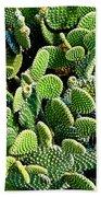 Field Of Cactus Paddles Beach Towel