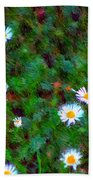 Field Of Daisys  Beach Towel