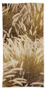 Field Of Feathers Beach Towel