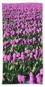 Field Of Purple Flowers Beach Towel