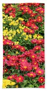 Field Of Red And Yellow Flowers Beach Towel