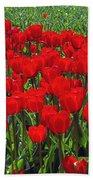 Field Of Red Tulips Beach Towel