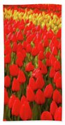 Field Of Tulips Beach Towel
