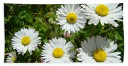 Field Of White Daisy Flowers Art Prints Summer Beach Towel