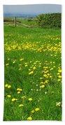 Field With Yellow Flowers Beach Towel