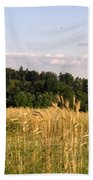 Fields Of Grain Beach Towel