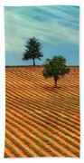Fields Of Provence Beach Towel