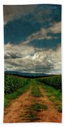 Fields Of Summer Beach Towel