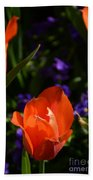 Fiery Colored Tulips Beach Towel