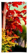 Fiery Red Autumn Beach Towel