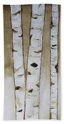 Fifteen Birch Trees Beach Towel