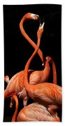 Fighting Flamingos Beach Towel