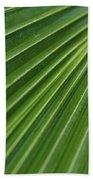 Fiji Fan Palm Beach Towel