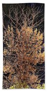Final Fall Beach Towel