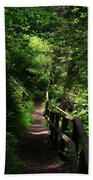 Finding The Right Path Beach Towel