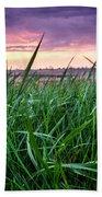 Finn Line Grass Beach Sheet