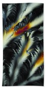 Fire And Frost Beach Towel