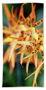 Fire Orchid Beach Towel