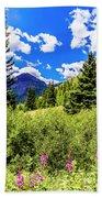 Fireweed, Deer Park Creek, Grand Turk Mountain Beach Towel
