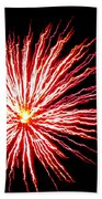 Firework Spider Mum Beach Towel
