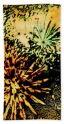 Fireworks 1 Beach Towel