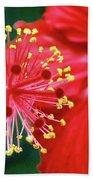 Fireworks - Hibiscus Beach Towel
