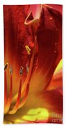 Firey Lily Beach Towel