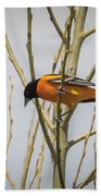 First Baltimore Oriole Of The Year  Beach Towel