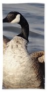 First Day Of Spring Goose Beach Towel