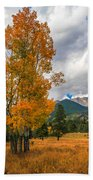 First Fall Colors In Rocky Mountain National Park Beach Towel