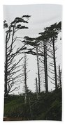 First Line Trees Along The Pacific Ocean Beach Towel